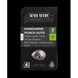 mandarin punch sensi seeds...
