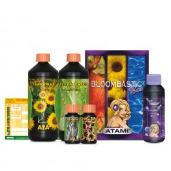Bloombastic Box Ata Terra...