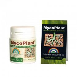 Trabe Mycoplant