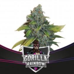 Gorilla Glue Raimbow BSF Seeds
