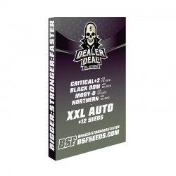 Dealer Deal XXL Automix BSF...